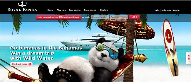 royalpanda-bahamas prijs